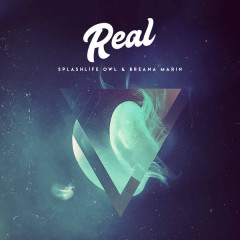Real (Single) - SplashLife Owl