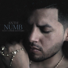 Numb (Single) - Anth
