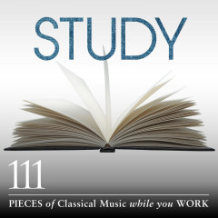 Study: 111 Pieces Of Classical Music While You Work - Various Artists