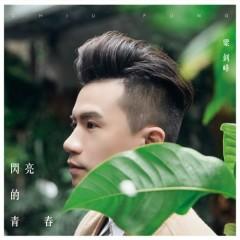 Thanh Xuân Tươi Đẹp / 閃亮的青春