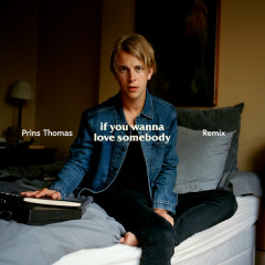 If You Wanna Love Somebody (Prins Thomas Remix)