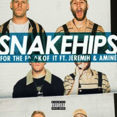 For The F^_^k Of It - Snakehips