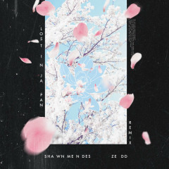 Lost In Japan (Remix) - Shawn Mendes, Zedd