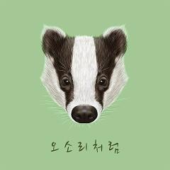 Like A Badger (Single)
