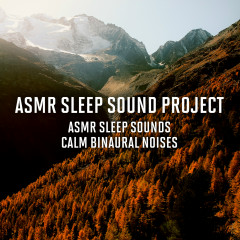 ASMR Sleep Sounds - Calm Binaural Noises