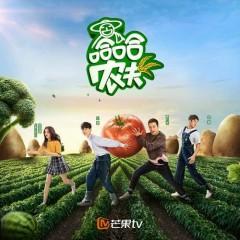 Nông Dân Haha / 哈哈农夫 (Single)