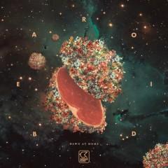 Dawn At Home (Remixes) - Bearoid