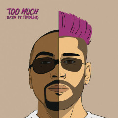 Too Much (Single) - ZAYN