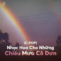 Nhạc Hoa Cho Những Chiều Mưa Cô Đơn - Various Artists