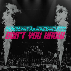 Don't You Know (Single) - Radistai Dj's