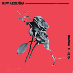 Me Va A Extranãr (Single)