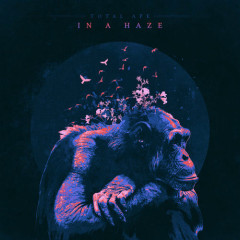 In A Haze (Single) - Total Ape