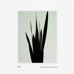 Weak (AKOUO Remix) - Wet