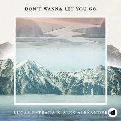 Don't Wanna Let You Go (Single)