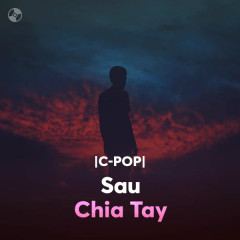Sau Chia Tay - Various Artists