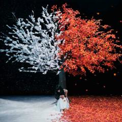 Akane Sasu / Everlasting Snow - EP - Aimer