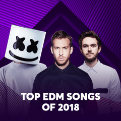 Top EDM Songs Of 2018 - Various Artists