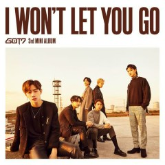 I Won't Let You Go [Japanese]
