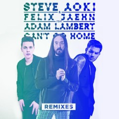 Can't Go Home (Remixes) - Steve Aoki,Felix Jaehn,Adam Lambert