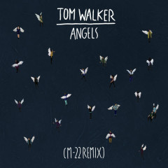 Angels (M-22 Remix) - Tom Walker