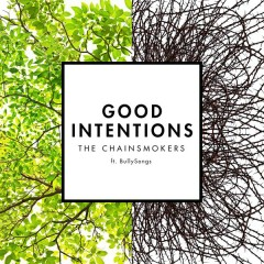 Good Intentions - The Chainsmokers,BullySongs