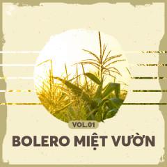 Bolero Miệt Vườn Vol 1 - Various Artists