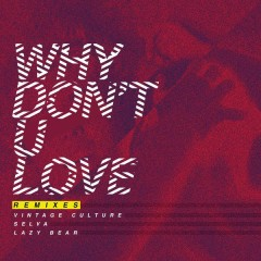 Why Don't U Love (Remixes) - Vintage Culture,Selva,Lazy Bear