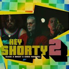 Hey Shorty 2 (Single)