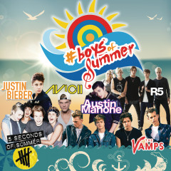 Boys Of Summer - Various Artists