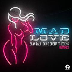 Mad Love (Remixes) - Sean Paul, David Guetta
