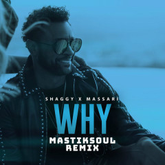 Why (Mastiksoul Remix) - Shaggy, Massari