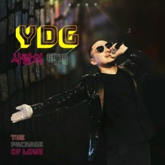 Package of Love (Single) - YDG