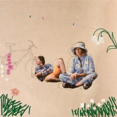 Bicycle (Remixes) - filous,klei