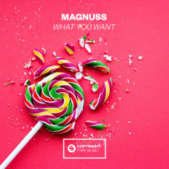 What You Want (Single) - Magnuss