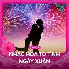 Nhạc Hoa Tỏ Tình Ngày Xuân - Various Artists