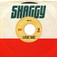 Use Me (Single) - Shaggy
