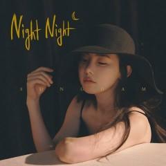 Night Night (Single) - Sung Dam