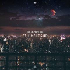 Tell Me It's Ok (Single)