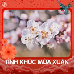 Tình Khúc Mùa Xuân - Various Artists