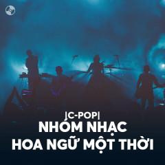 Nhóm Nhạc Hoa Ngữ Một Thời - Various Artists