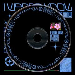 I Wanna Know (Single) - RL Grime