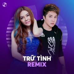 Nhạc Trữ Tình Remix - Various Artists