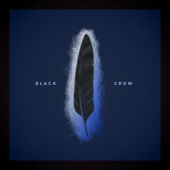 Black Crow (Single) - Louis Baker