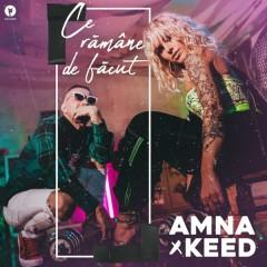 Ce Ramane De Facut (Single) - Amna