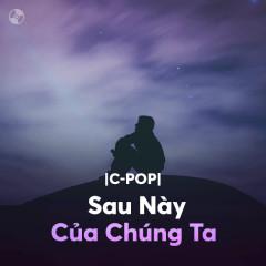 Sau Này Của Chúng Ta - Various Artists