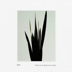 Weak (Live @ Electric Lady) - Wet