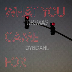 What You Came For (Single) - Thomas Dybdahl