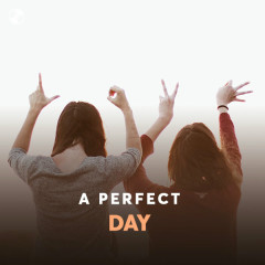 A Perfect Day - Various Artists