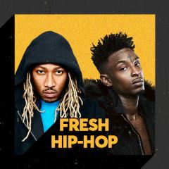 Fresh Hip-Hop - Various Artists