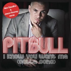 I Know You Want Me (Calle Ocho) (Alex Gaudino & Jason Rooney Remix) - Pitbull